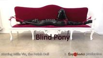 Blind Pony - Video 0