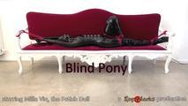 Blind Pony - Video 4