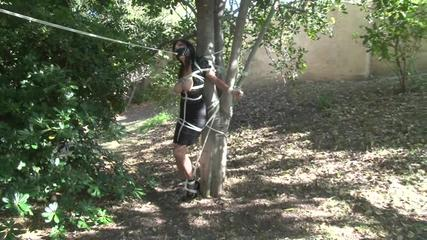 Two Ballgags for Ashley Renee - Video Scene Plus Slideshow