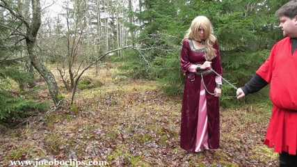 Captured Princess Used
