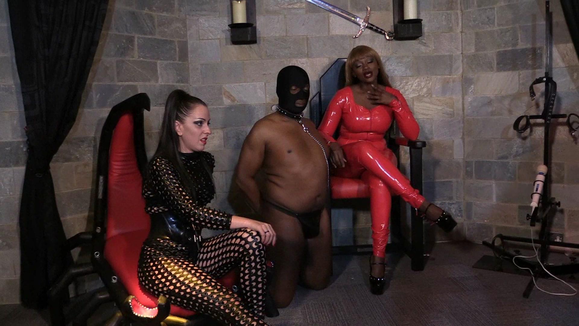 Real femdom castration wmv nude hotties milf