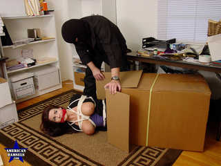 Photo set: Sexy Secretary Taken Captive - Alexis Taylor